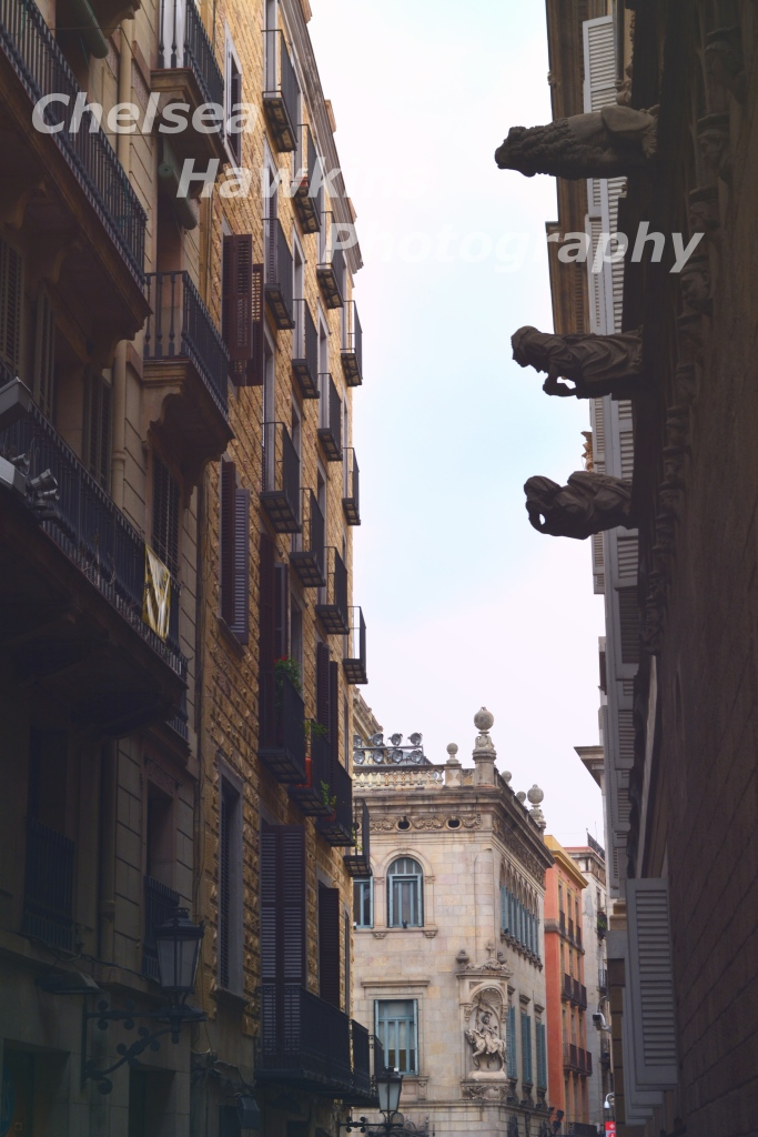 Barcelona the boulevards and avenues 2 watermarked